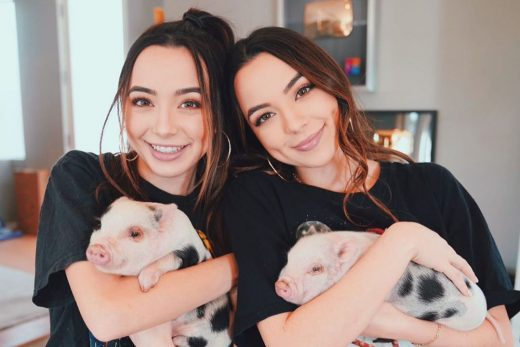youtube merrell twins